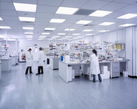 Wide angle view of scientists working in laboratory