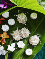 Still life of asian dessert confectionary on banana leaf