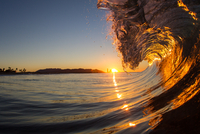 Barrelling wave at sunset, Hawaii