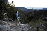 Young woman hiking, Mount Charleston Wilderness trail, Nevada, USA
