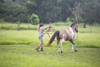 Mature woman exercising horse in field