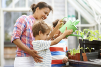 Mid adult woman and two sons watering the plants in greenhouse