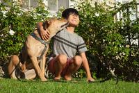 Dog licking boys face in garden