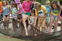 Front view of large group of kids collecting small fish from fishing net