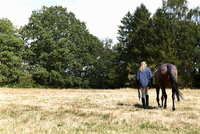 Rear view of girl leading horse in field