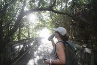 Female hiker drinking from water bottle on sunlit footbridge, North Palm Beach, Florida, USA