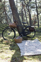 Bicycle with foraging baskets and blanket on forest floor