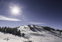 Sunlit snow covered ski slope, Scheffau, Tyrol, Austria