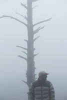 Man standing by bare tree in fog