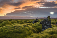 Moss covered landscape at sunset, Eldhraun, Iceland