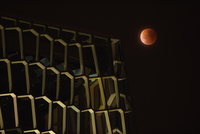 Harpa Reykjavik Concert Hall and Conference Center and Blood Moon, Iceland