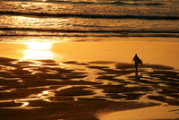 High angle view of surfer on beach walking to ocean carrying surfboard at sunset