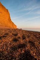 Shingle beach and cliffs at dusk, Burton Bradstock, Dorset, UK