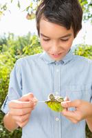 Teenage boy in garden staring at caterpillar on leaf