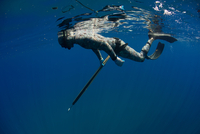 Underwater side view of spearfisher preparing to dive on wreck, Cabo Catoche, Quintana Roo, Mexico