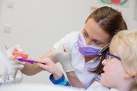 Boy and dentist in dental office brushing dentures