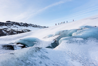 Group of people exploring glacier, Solheimajokull, Iceland