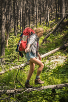 Teenage female hiker hiking through fallen trees in forest, Red Lodge, Montana, USA