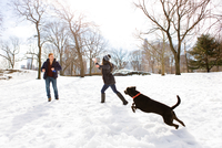 Young couple playing with dog in snowy Central Park, New York, USA