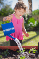 Young girl in garden, holding watering can, watering plants in tub