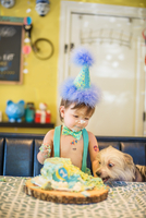 Baby boy and pet dog staring at messy birthday cake on table