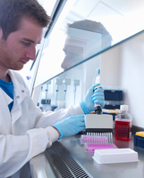 Scientist using multi well pipette to fill multi well plate in biological safety cabinet in laboratory, Jenner Institute, Oxford