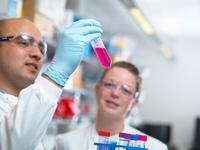 Scientists preparing media for parasite culture in laboratory, Jenner Institute, Oxford University