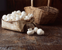 Mushrooms in vintage wooden basket