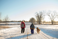 Golden retriever and two young sisters carrying school satchels walking on snow covered track, Ontario, Canada