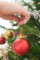 Womans hand hanging bauble on christmas tree