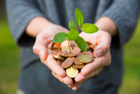 Front view of womans cupped hands holding tree seedling growing from coins