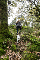 Female hiker and her dog hiking up woodland, Spain