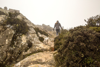Rear view of female hiker and her dog hiking in misty mountains, Spain