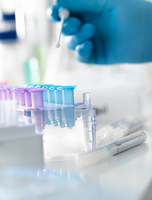 Scientist preparing a DNA swab for analysis in a laboratory for forensic or paternity testing