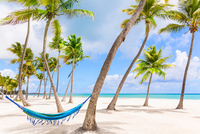 Hammock between palm tree's on beach, Dominican Republic, The Caribbean