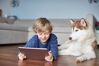 Boy lying on living room floor with husky browsing digital tablet