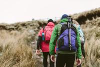 Hikers crossing moor, Yorkshire Dales National Park, England
