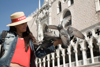 Young woman feeding pigeons at St Marks Basilica, Venice, Italy