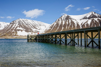 Man walking along jetty, mountains in background, Westfjords, Iceland