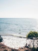 Two surfers at sea, Santa Barbara, California, USA