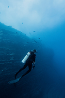 Rear view of scuba diver by underwater rock face
