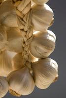 Hanging bunch of garlic bulbs