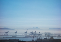 Loading cranes on dock in mist, Cape Town, South Africa