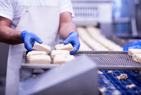 Cropped view of man working in food production factory