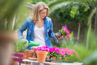 Young woman tending pink flower pot plant at garden table