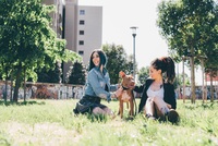 Two young women sitting with pit bull terrier in urban park