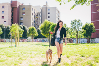 Young woman walking pit bull terrier in urban park