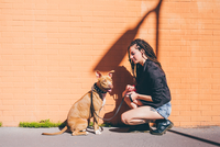 Young woman with dreadlocks crouching to pit bull terrier in front of orange wall