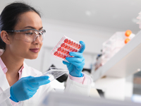 Female scientist examining cell cultures in multi well tray in the laboratory