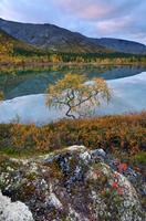 Autumn coloured landscape at Polygonal Lakes, Khibiny mountains, Kola Peninsula, Russia